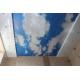 Двухуровневый натяжной потолок арт печать Н4.4